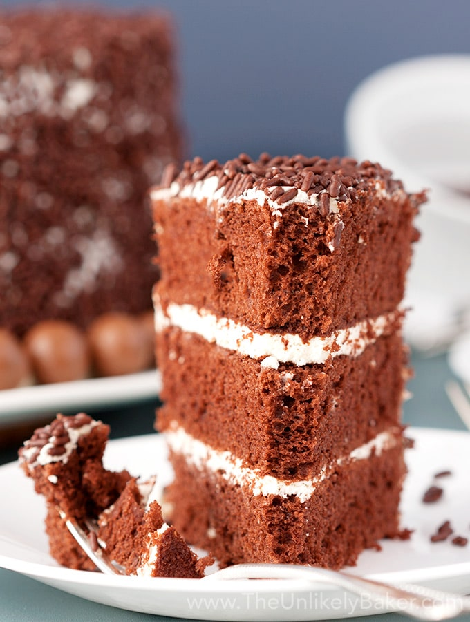 Chocolate Chiffon Cake with Whipped Cream Frosting