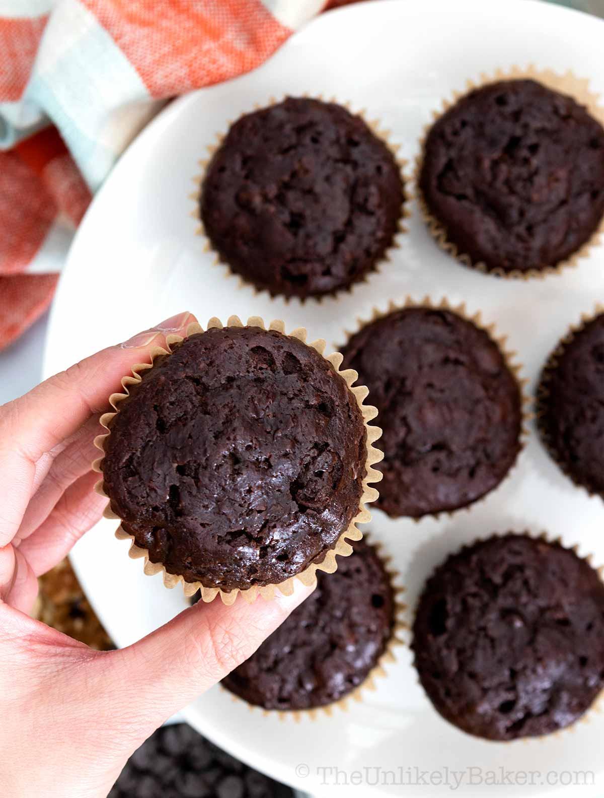 Chocolate Chip Ricotta Muffins
